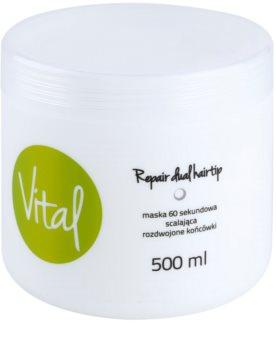 Stapiz Vital máscara renovadora para cabelo danificado
