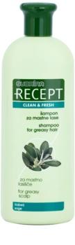 Subrina Professional Recept Clean & Fresh šampon za občutljivo lasišče