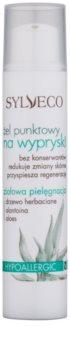 Sylveco Face Care lokale Pflege gegen Akne