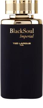 Ted Lapidus Black Soul Imperial eau de toilette pour homme 100 ml