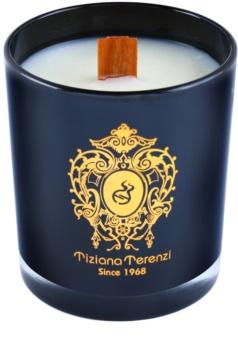 Tiziana Terenzi Capri Fig vonná svíčka   malá