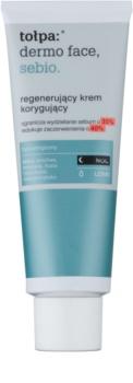 Tołpa Dermo Face Sebio Regenerating Night Cream for Oily Skin