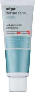 Tołpa Dermo Face Sebio Matting Day Cream for Oily Skin