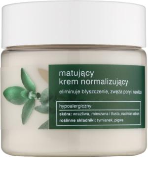 Tołpa Green Matt Normalising Mattifying Cream for Oily Skin