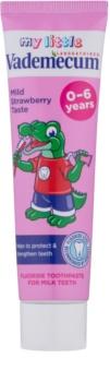 Vademecum Junior dentifrice pour bébé et enfant saveur fraise