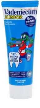 Vademecum Junior pasta de dientes para niños con sabor a menta