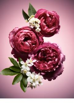 Viktor & Rolf Flowerbomb Nectar парфумована вода для жінок 90 мл