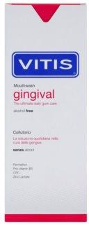 Vitis Gingival płyn do płukania jamy ustnej przeciw płytce nazębnej i dla zdrowych dziąseł