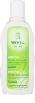 Weleda Hair Care sampon búzával korpásodás ellen