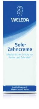 Weleda Dental Care Toothpaste With Sea Salt