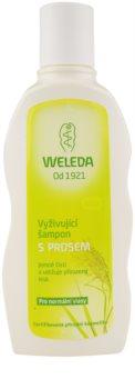 Weleda Hair Care shampoing nourrissant au millet pour cheveux normaux