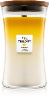 Woodwick Trilogy Fruits of Summer Αρωματικό κερί 609,5 γρ μεγάλη