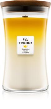 Woodwick Trilogy Fruits of Summer vonná svíčka 609,5 g velká