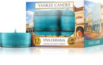 Yankee Candle Viva Havana čajová svíčka 12 x 9,8 g