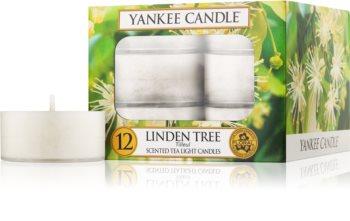Yankee Candle Linden Tree čajová sviečka 12 x 9,8 g