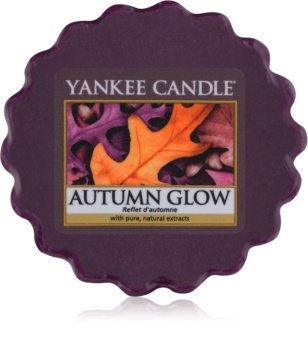 Yankee Candle Autumn Glow Wax Melt 22 gr