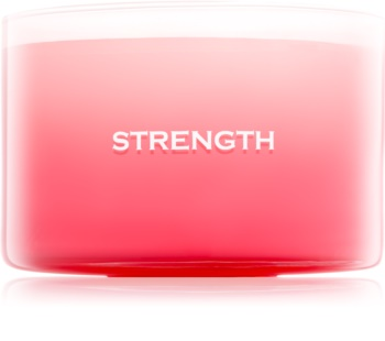 Yankee Candle Making Memories Strength candela profumata 510 g