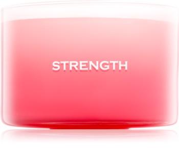 Yankee Candle Making Memories Strength Geurkaars 510 gr