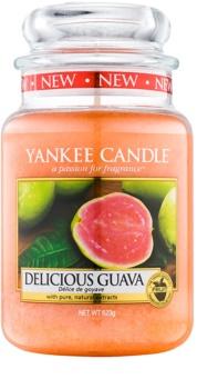 Yankee Candle Delicious Guava dišeča sveča  623 g Classic velika