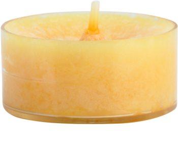 Yankee Candle Mango Peach Salsa Teelicht 12 x 9,8 g