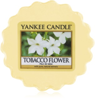 Yankee Candle Tobacco Flower tartelette en cire 22 g