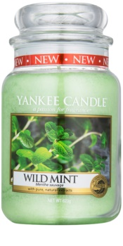 Yankee Candle Wild Mint dišeča sveča  623 g Classic velika