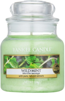 Yankee Candle Wild Mint vela perfumada  104 g Classic pequeña