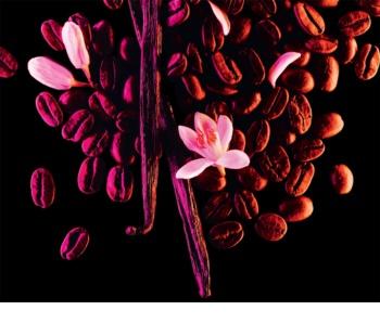 Yves Saint Laurent Black Opium Eau de Parfum voor Vrouwen  50 ml Limited Edition  Sound Illusion