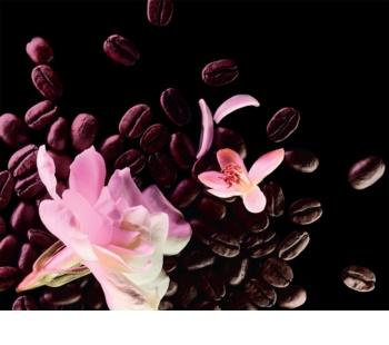 Yves Saint Laurent Black Opium Floral Shock Eau de Parfum voor Vrouwen  50 ml