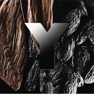 Yves Saint Laurent Y Eau de Parfum voor Mannen 100 ml