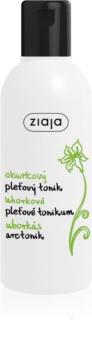 Ziaja Cucumber Reinigende Tonic voor Gemengde en Vette Huid