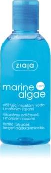 Ziaja Marine Algae Cleansing Micellar Water for Normal and Dry Skin