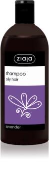 Ziaja Family Shampoo champô para cabelo oleoso