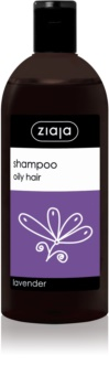 Ziaja Family Shampoo šampon za mastne lase