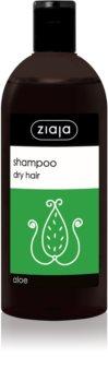 Ziaja Family Shampoo šampon za suhe lase in lase brez sijaja z aloe vero