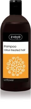 Ziaja Family Shampoo Shampoo  voor Gekleurd Haar