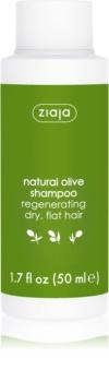 Ziaja Natural Olive regeneracijski šampon za suhe lase