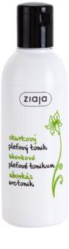 Ziaja Cucumber Reinigungstonikum für fettige und Mischhaut