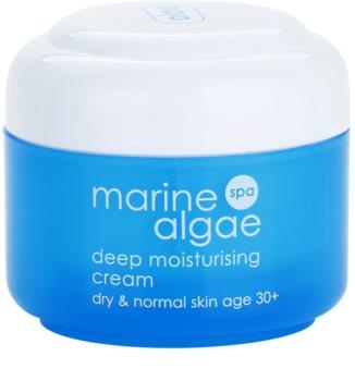 Ziaja Marine Algae stark feuchtigkeitsspendende Creme für normale und trockene Haut