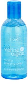 Ziaja Marine Algae reinigendes Mizellarwasser für normale und trockene Haut
