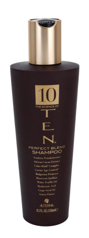 Alterna Ten shampoing nourrissant pour renouveler et renforcer les cheveux sans sulfates