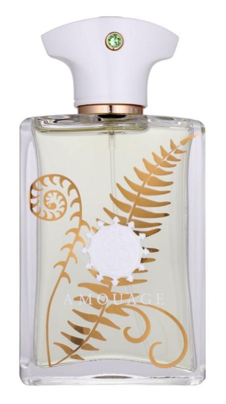 Amouage Bracken Eau de Parfum for Men 100 ml