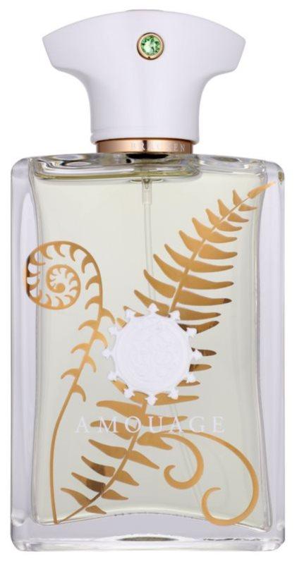 Amouage Bracken eau de parfum per uomo 100 ml