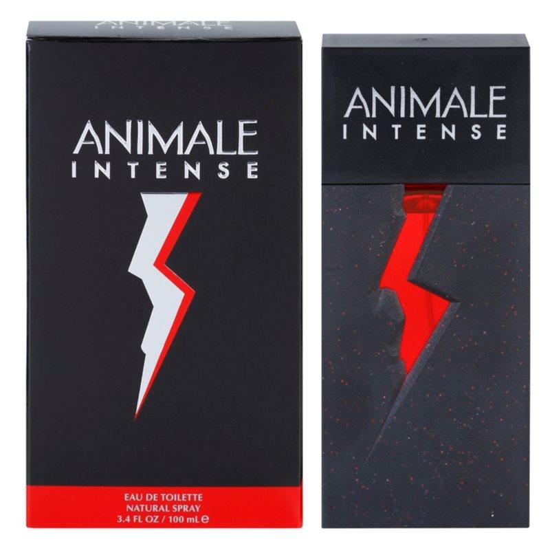 Animale Intense for Men eau de toilette pour homme 100 ml