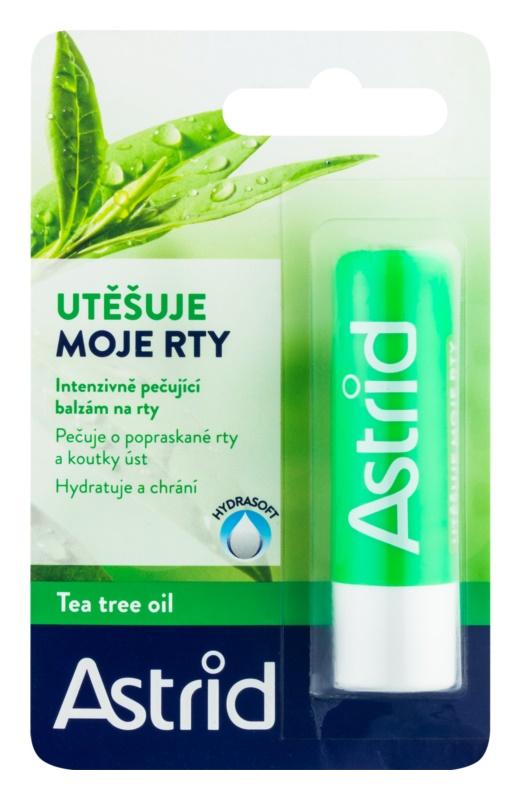 Astrid Lip Care baume à lèvres