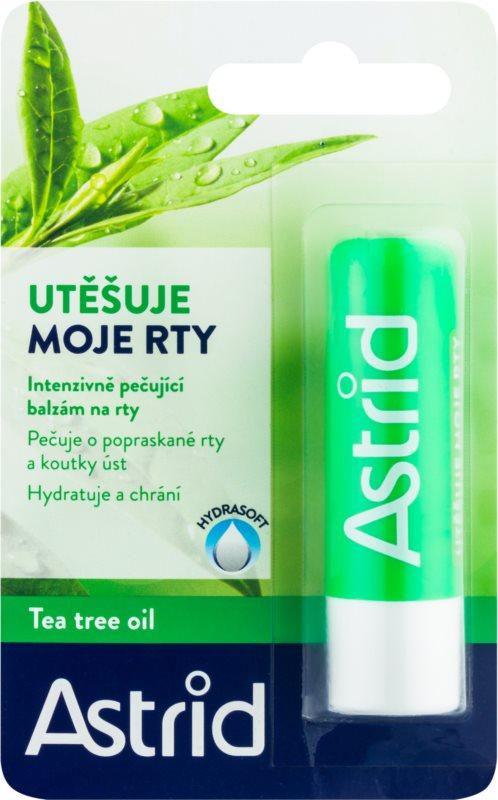 Astrid Lip Care Lip Balm