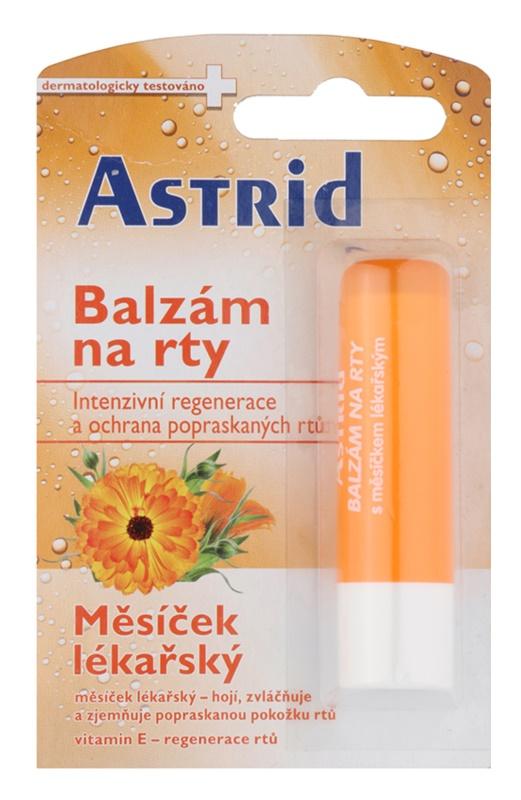 Astrid Lip Care regeneračný balzam na pery s nechtíkom lekárskym