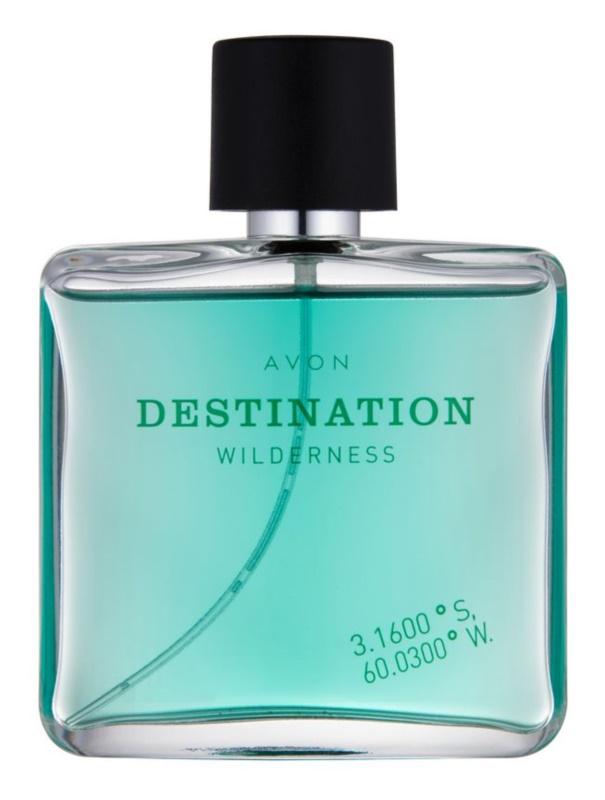 Avon Destination Wilderness Eau de Toilette voor Mannen 75 ml