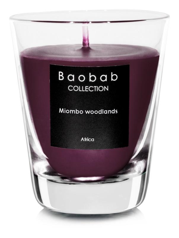 Baobab Miombo Woodlands dišeča sveča  6,5 cm (votivna)