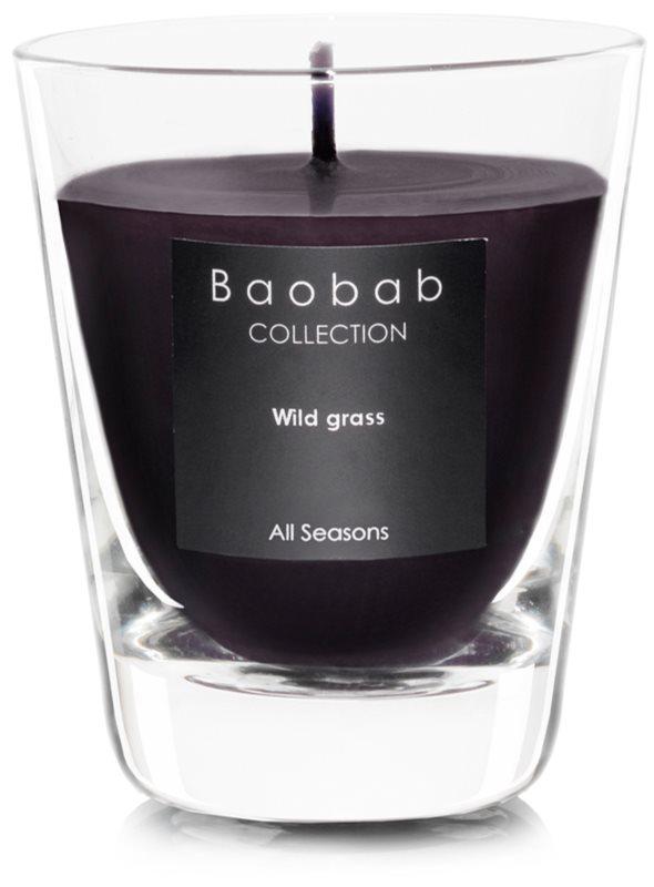 Baobab Wild Grass vonná sviečka   (votívna)